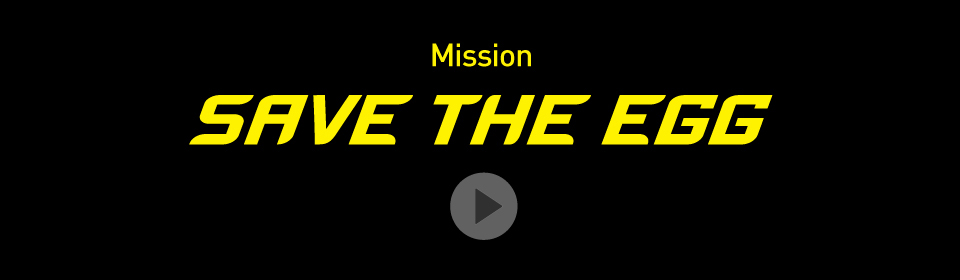 Home Page Banner - Mission: SAVE THE EGG